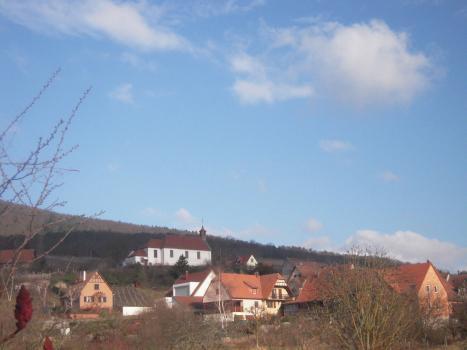 Munchberg Vineyard, Gisselbrecht