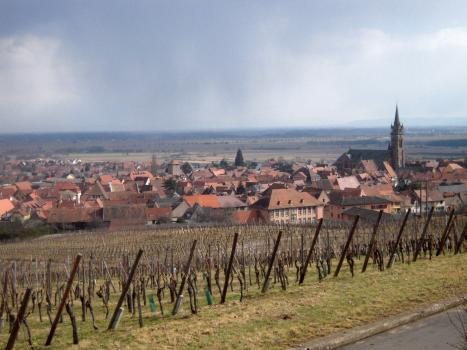 Dambach, Alsace, Gisselbrecht, Vision Wine Brands