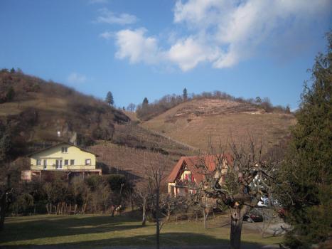 Niedermorschwihr, Alsace