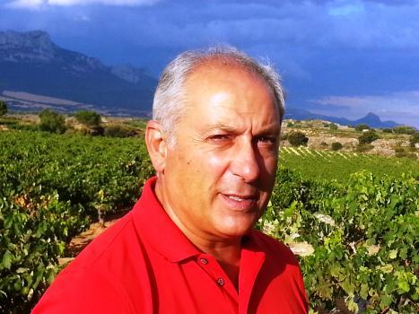 Luis Cañas, Vision Wine Brands, Kysela