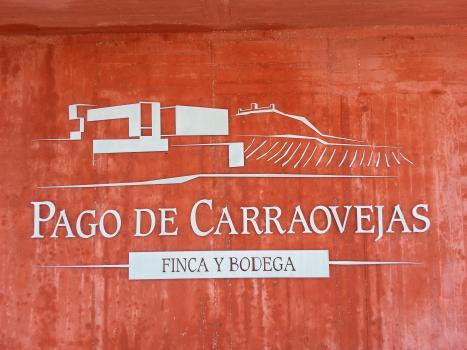Pago de Carraovejas, Vision Wine Brands