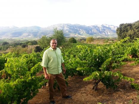 Ricardo Castiblanco, Rioja, Vision Wine Brands